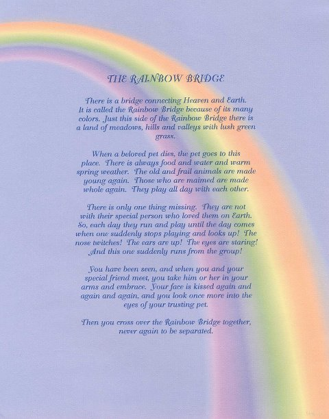 In Memory, Rainbow Bridge - click to honor your pet with a donation to Annie's Fund