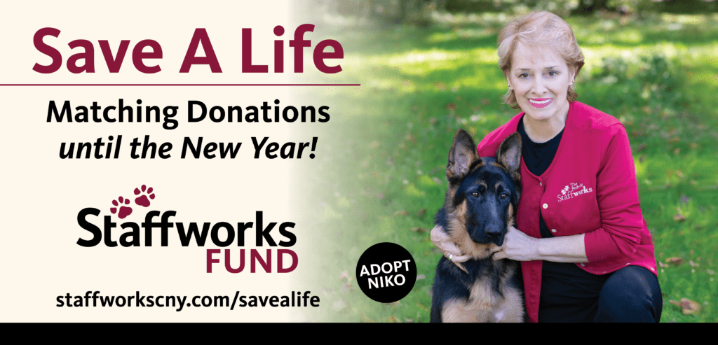 Save A Life with the Staffworks Fund